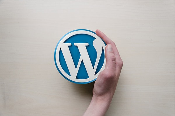 Wordpress op maat gemaakt webdesign